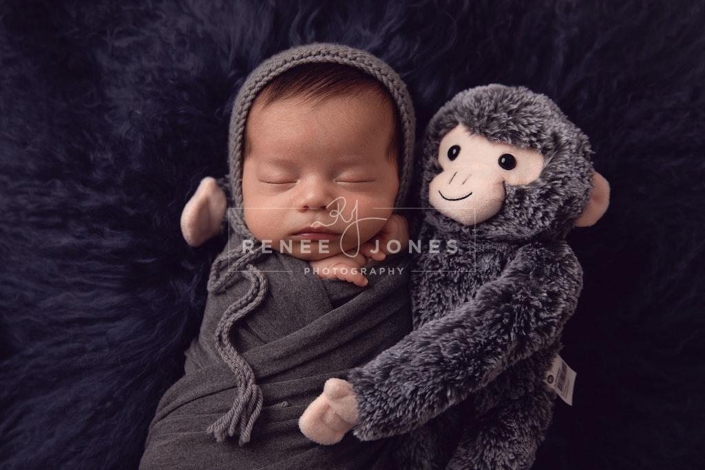 Newborn Baby 2 - Brisbane Baby Photographer - Sleeping newborn cuddling a stuffed toy