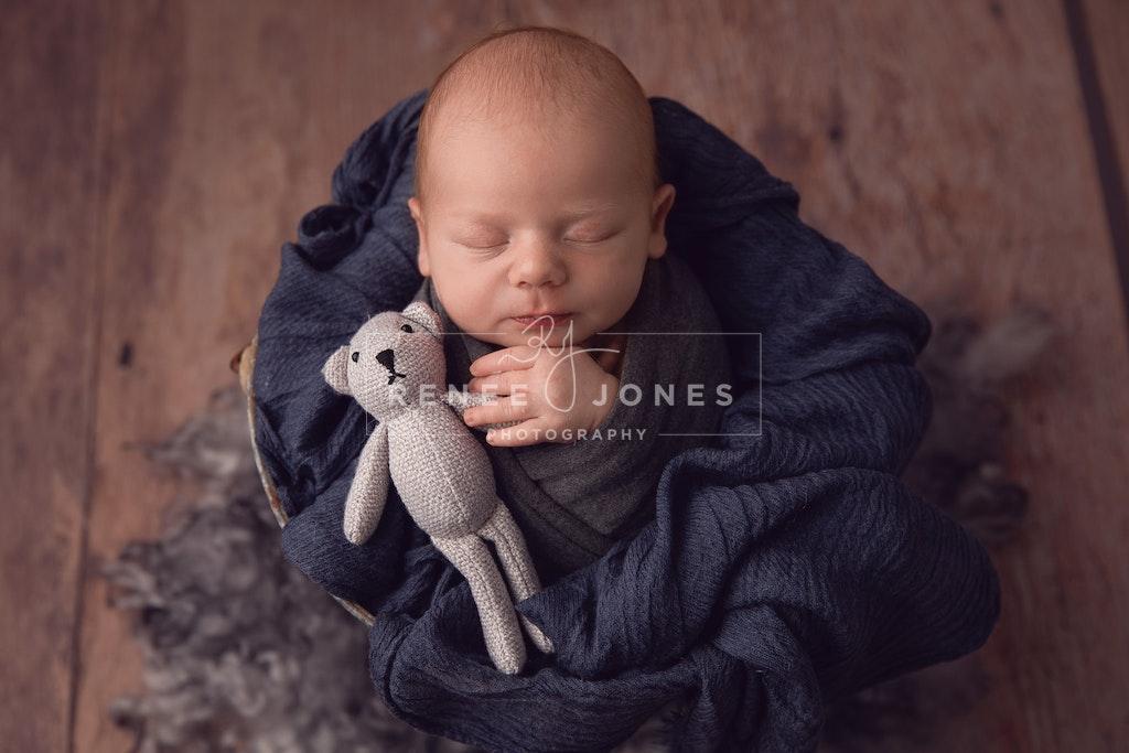 Newborn Baby Boy 1 - Brisbane baby Photographer - Newborn boy with grey Teddie upright in a bucket prop