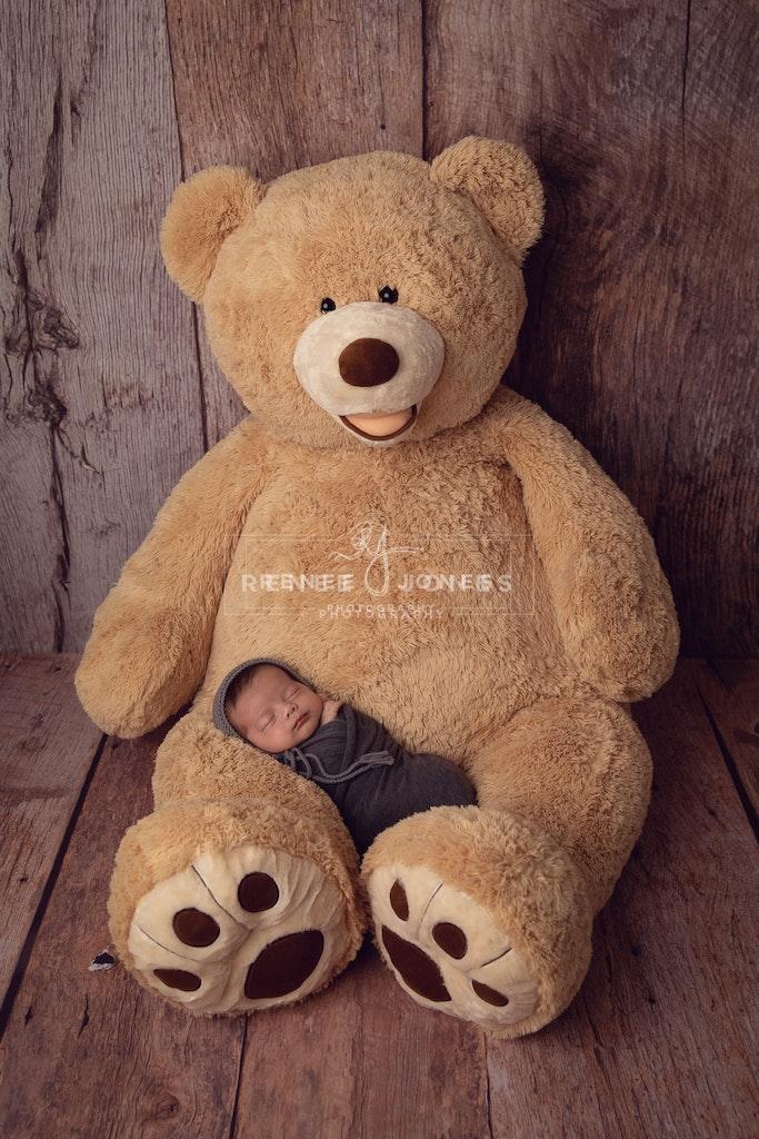Newborn Photography - Brisbane Baby Photographer - Newborn baby boy with enormous teddy bear