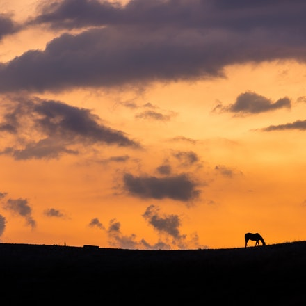 Koriella Sunset 03