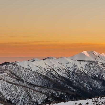 Mount Feathertop Sunrise in Gold