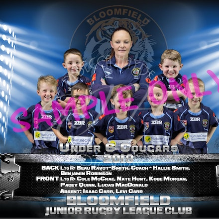 U6 Cougars team-sample