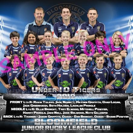 U10 Tigers Team_sample