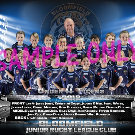U11 Tigers Team_sample