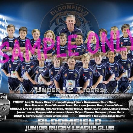 U12 Tigers Team_sample