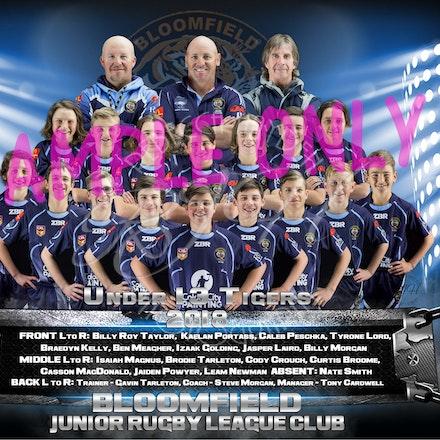U13 Tigers Team_sample update