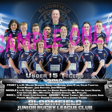 U15 Tigers Team_sample