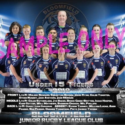 U15 Tigers Team_sample