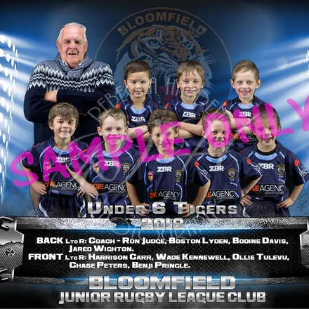 U6 Tigers team_sample