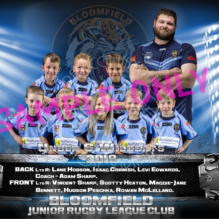 U6 Wildcats team_sample