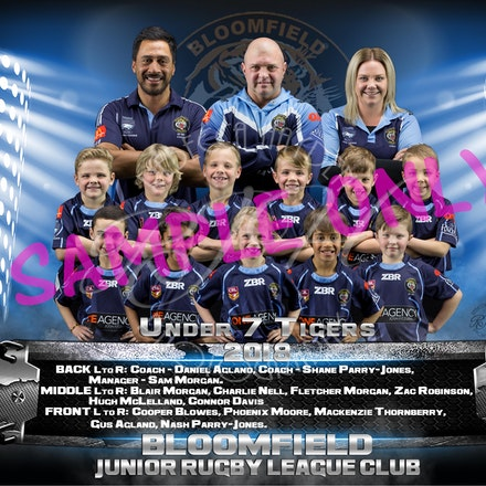 U7 Tigers Team-sample