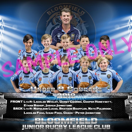 U9 Cougars Team_sample