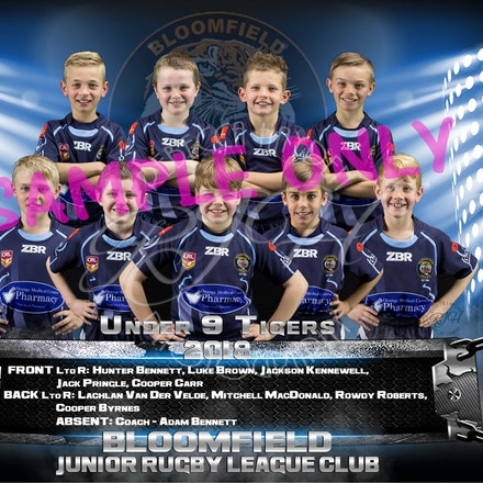 U9 Tigers Team_sample