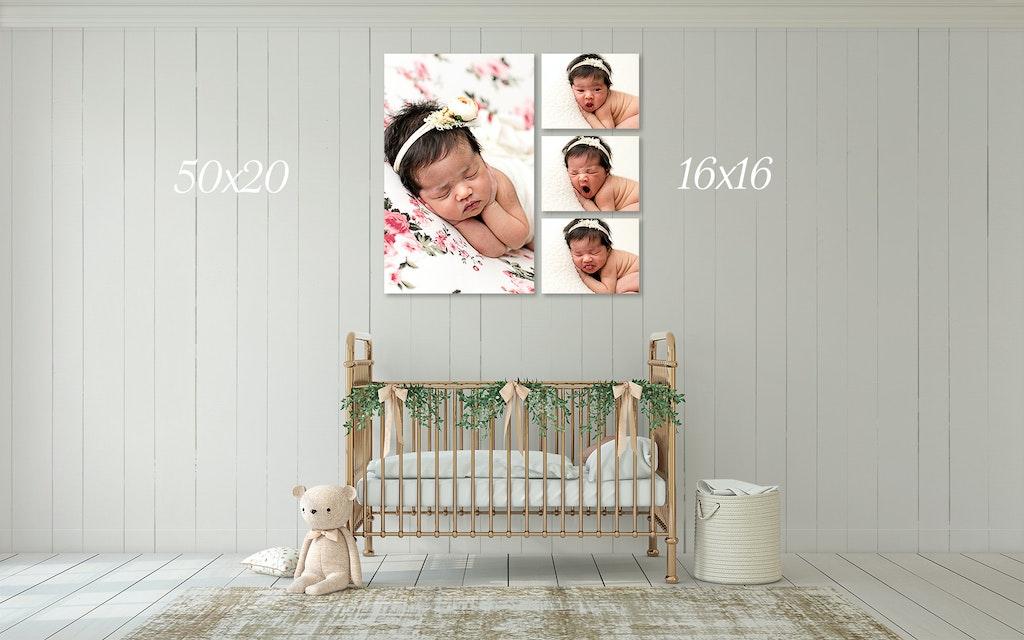 photo baby brisbane 3