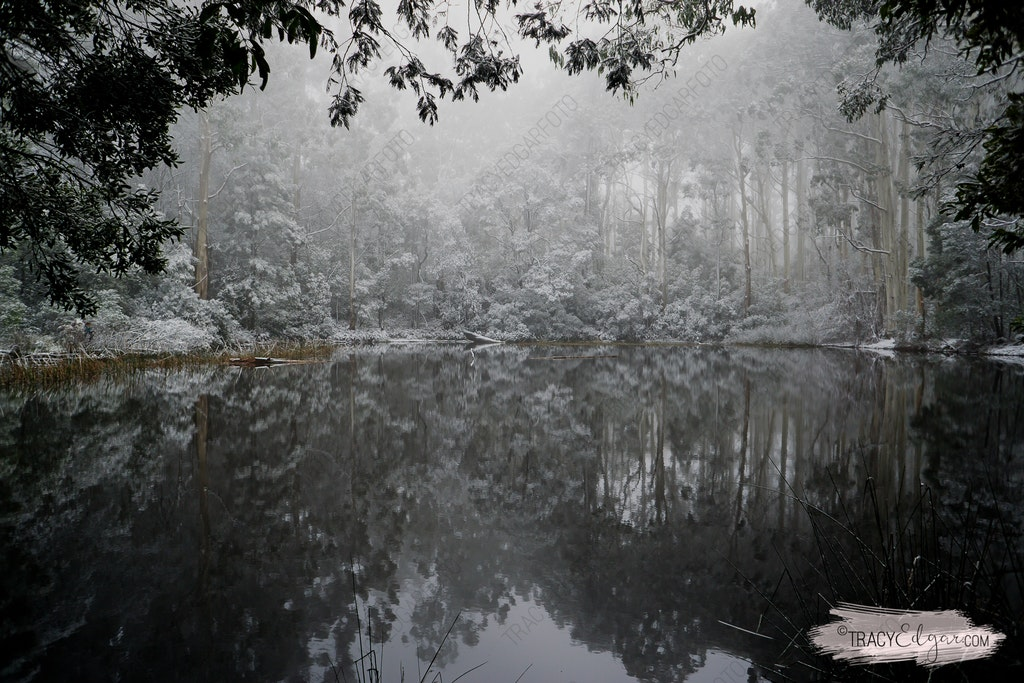 Mt Macedon | A Winter Wonderland #9 - Sanatorium Lake
