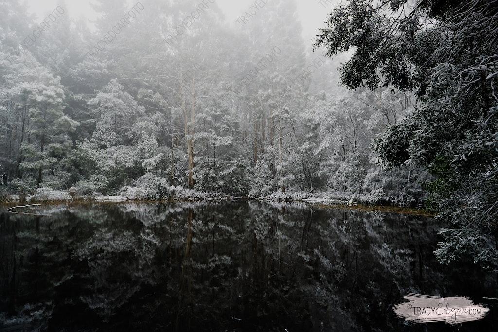 Mt Macedon | A Winter Wonderland #11 - Sanatorium Lake