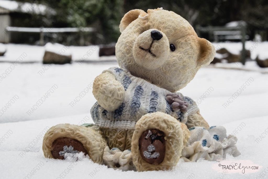 Mount Macedon - A Lensbaby Winter Wonderland #48 - Photo prop fun in the snow
