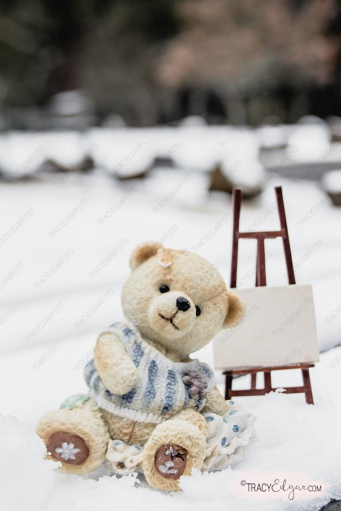Mount Macedon - A Lensbaby Winter Wonderland #54 - Photo prop fun in the snow