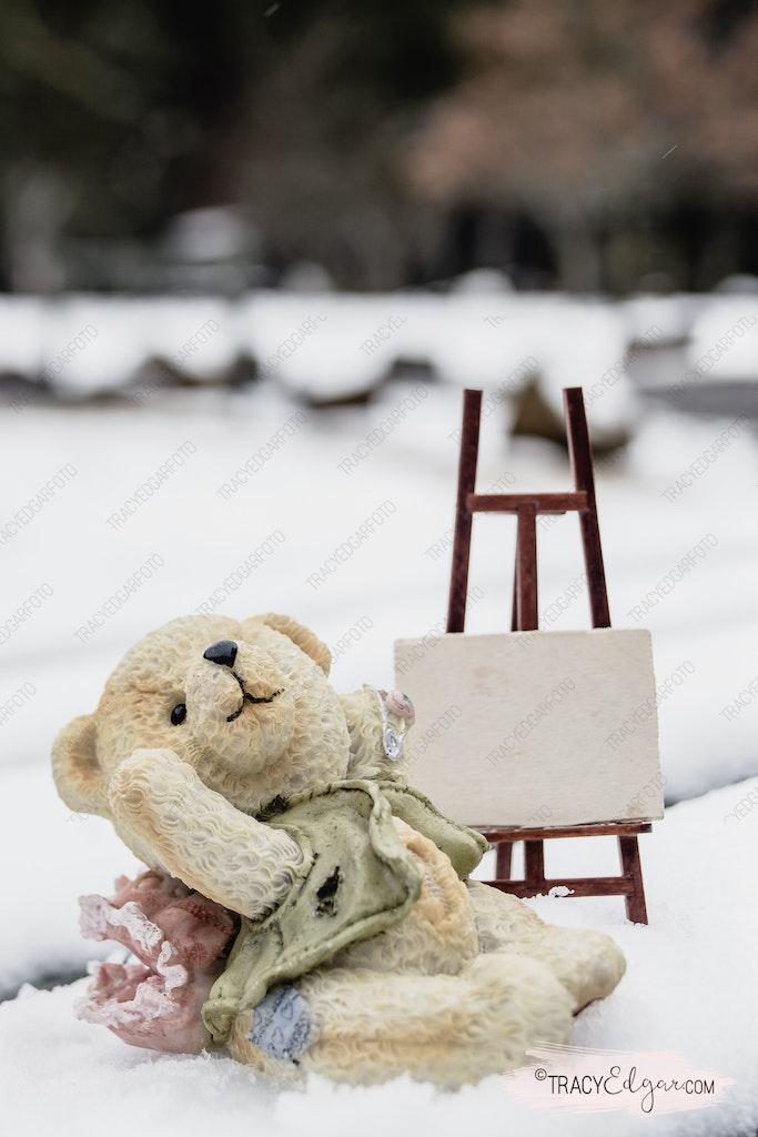 Mount Macedon - A Lensbaby Winter Wonderland #49 - Photo prop fun in the snow