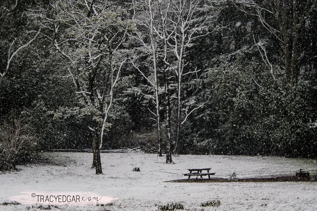 Snowfall | Mt Macedon #2