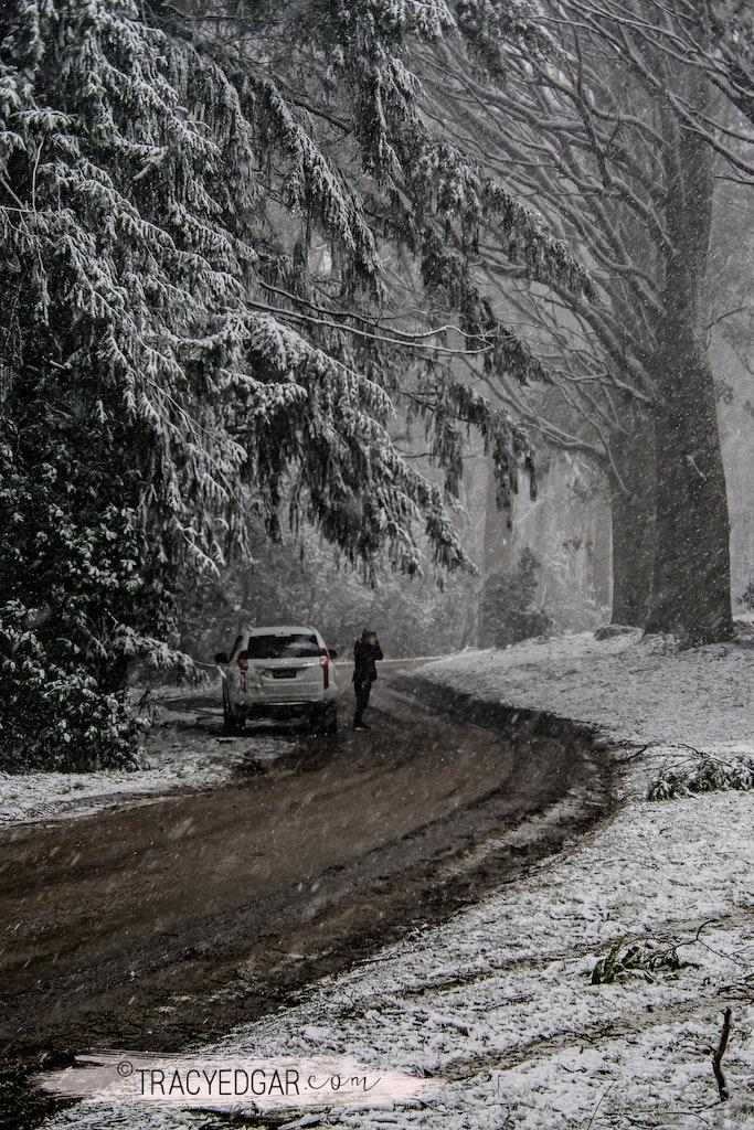 Snowfall | Mt Macedon #1 - Mount Macedon | Macedon Ranges | Macedon Regional Park | Victoria | Australia | Snow | Winter | Landscape Photography | Fine...