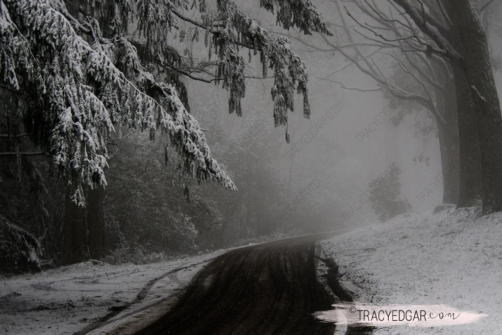 Snowfall | Mt Macedon #6