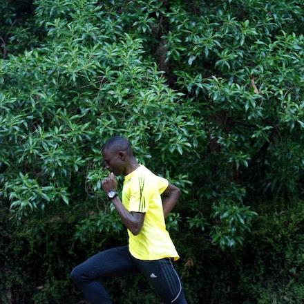 David Rudisha - David Rudisha training around The Tan in Melbourne ahead of the 2011 World Athletics Tour meet.