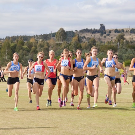 World Cross Country Trial 2013