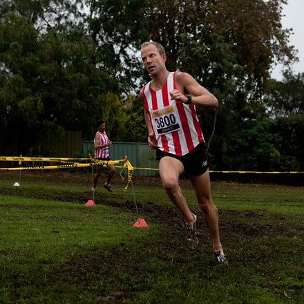 NSW Cross Country Relays 2013