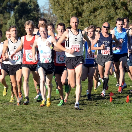 2013 Victorian Cross Country Championships