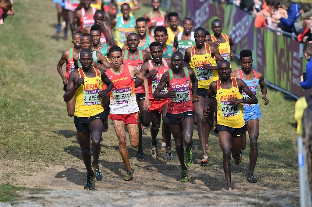 Senior men - The field in the senior men's race at the 2019 World Cross Country Championships.