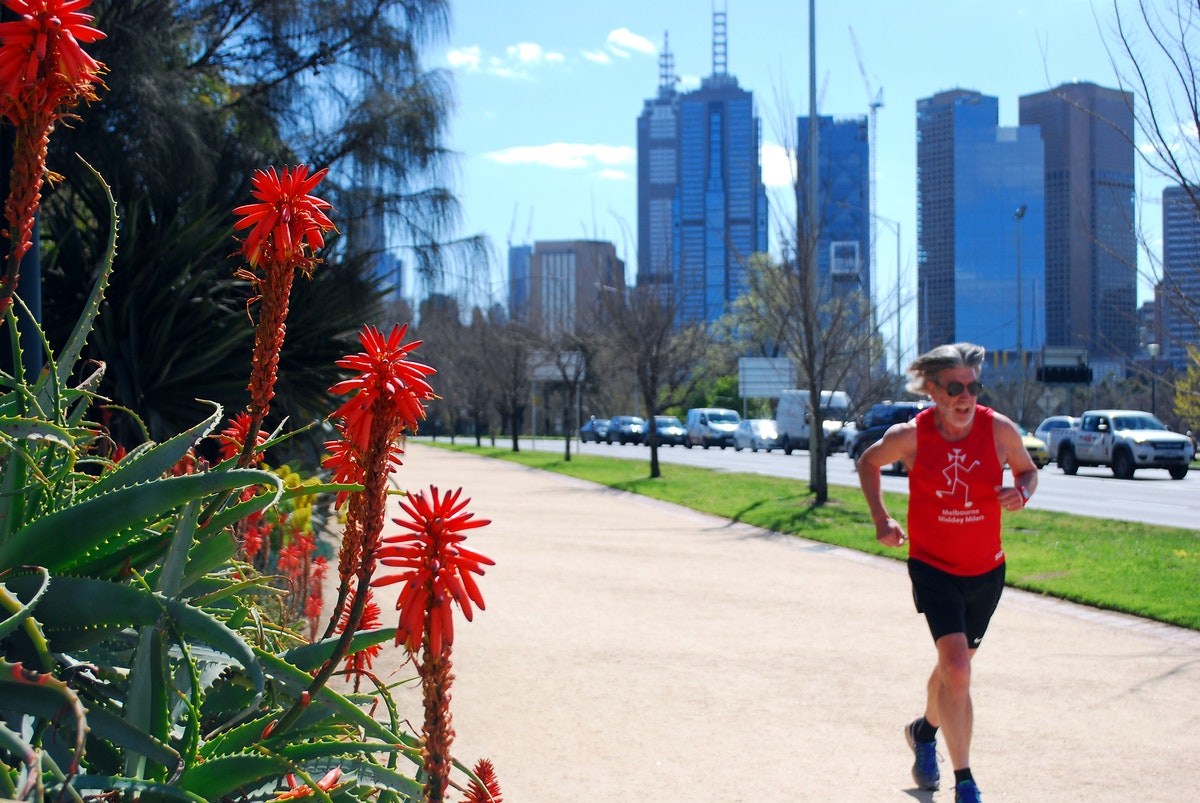 The Tan - Lunchtime in Melbourne. A runner pounds around The Tan track with Melbourne's CBD in the background.