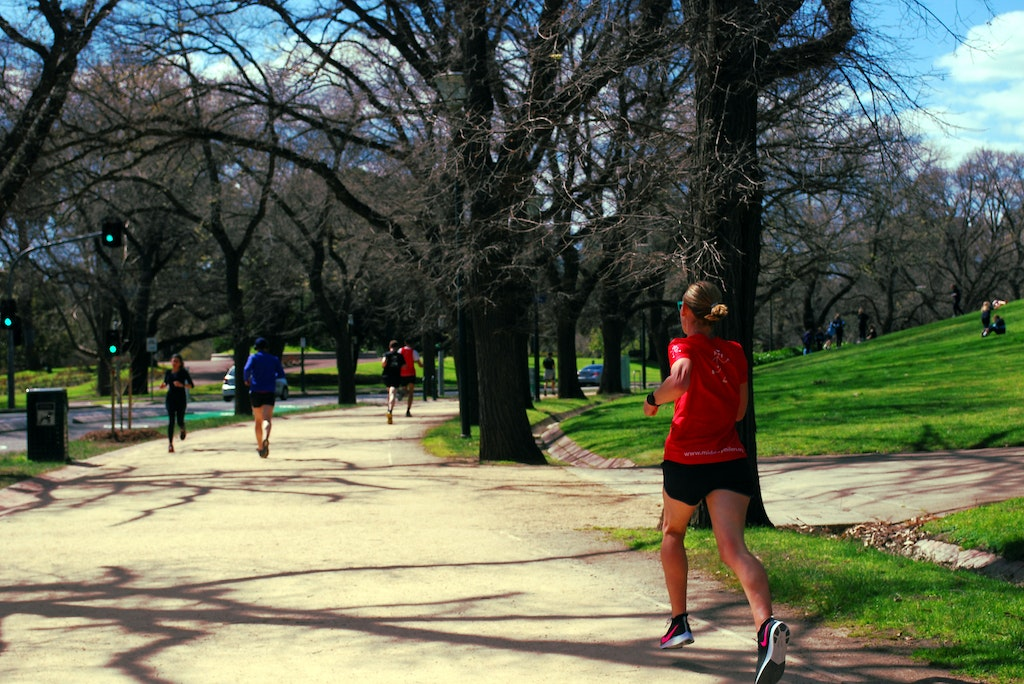 The Tan - Located adjacent to the Melbourne CBD, The Tan is a popular running spot.