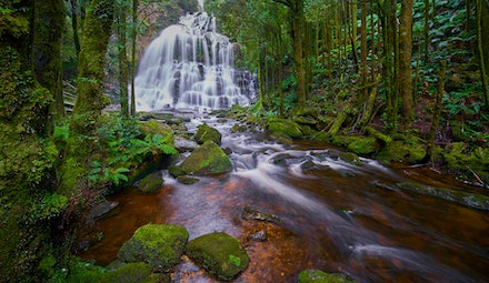 Nelson Falls - Located in the World Heritage–listed Tasmanian Wilderness, along the Lyell Highway is Nelson Falls.