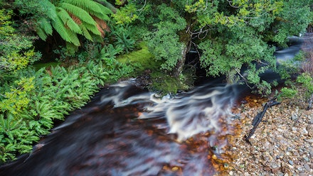 Bird River - The Bird River at Kelly Basin in Tasmania's World Heritage Wilderness.