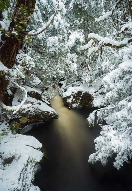 Enchanted Walk - Five days of snowfall at Cradle Mountain turned the park into a stunningly beautiful winter wonderland.