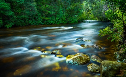 Franklin River - Tasmania's wild and spectacular Franklin River.