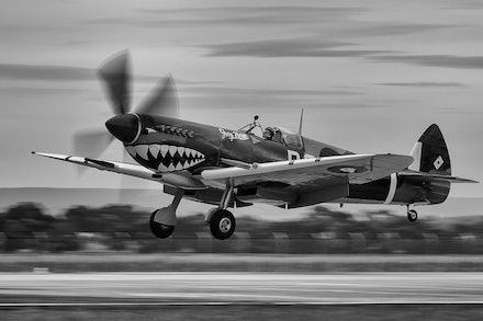 Supermarine Spitfire Mk VIII VH-HET 'Grey Nurse' - Avalon