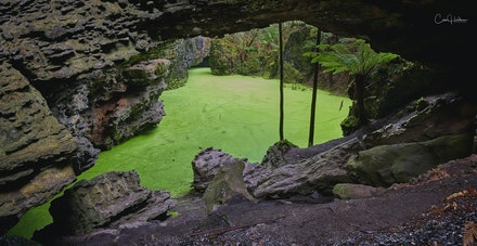 'Trowutta Arch' - Hidden at the end of a beautiful temperate rain forest walkway is the impressive rock formation of Trowutta Arch.