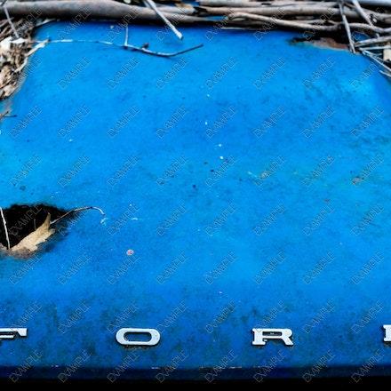 DSC01719 - Ford badge