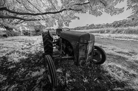 Tractor - A black and white image of an old rusty farm tractor.