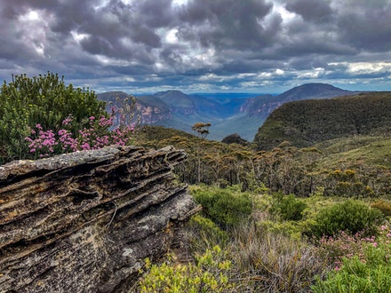 where is blue mountains national park
