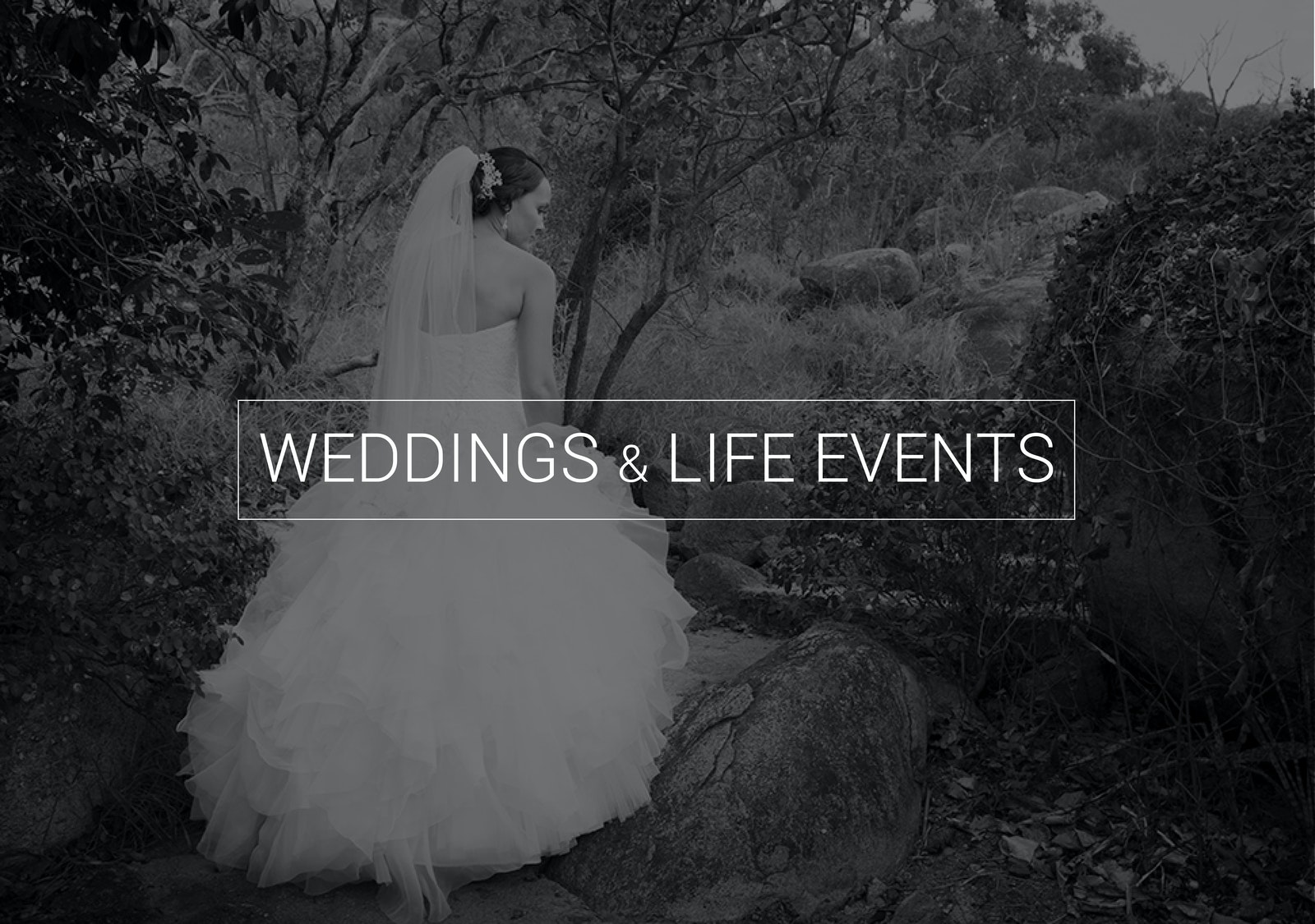 Weddings & Life Events