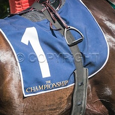 MRC 2020 March 22 Country Championships Wildcard